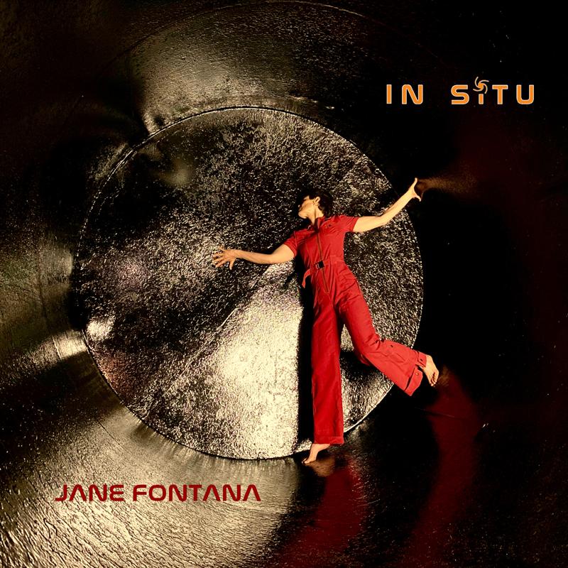 In Situ, by Jane Fontana